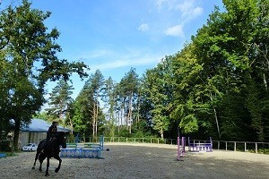 manege, paddoks, acces foret cheval