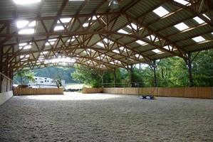 Sélection chevaux, Sélection poneys, chevaux de sport